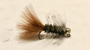 Fly Arrivals this week @ HH of Craig