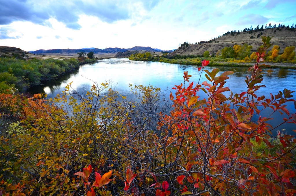 Missouri River September Fishing Forecast