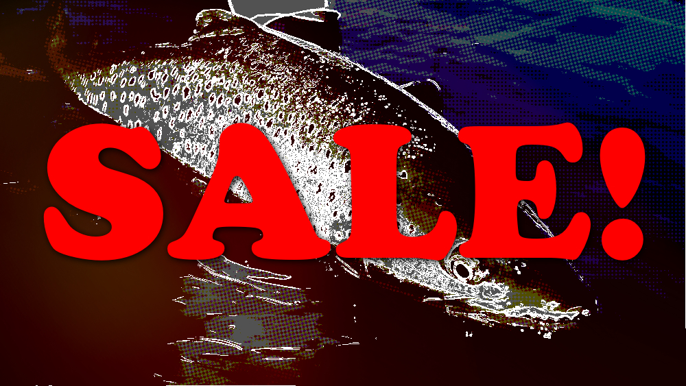 Fly Fishing Sale