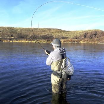 New Years Fishing