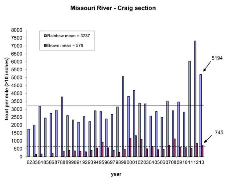 Missouri River Trout Numbers High