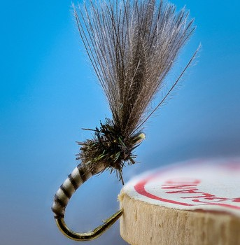 Flies for Rivers