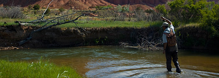 Stream access battles utah and montana in ongoing access for Fly fishing utah