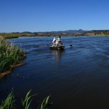 The Comprehensive FGuide to Guided Fishing Trips