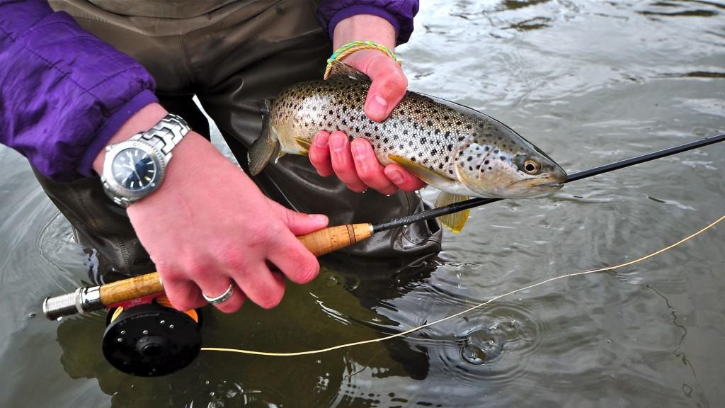 Saturday Missouri River Fishing Report