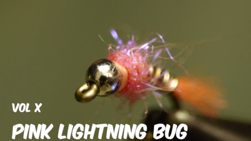 Pink Lightening Bug