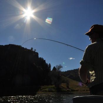 Missouri River Montana Fishing Report