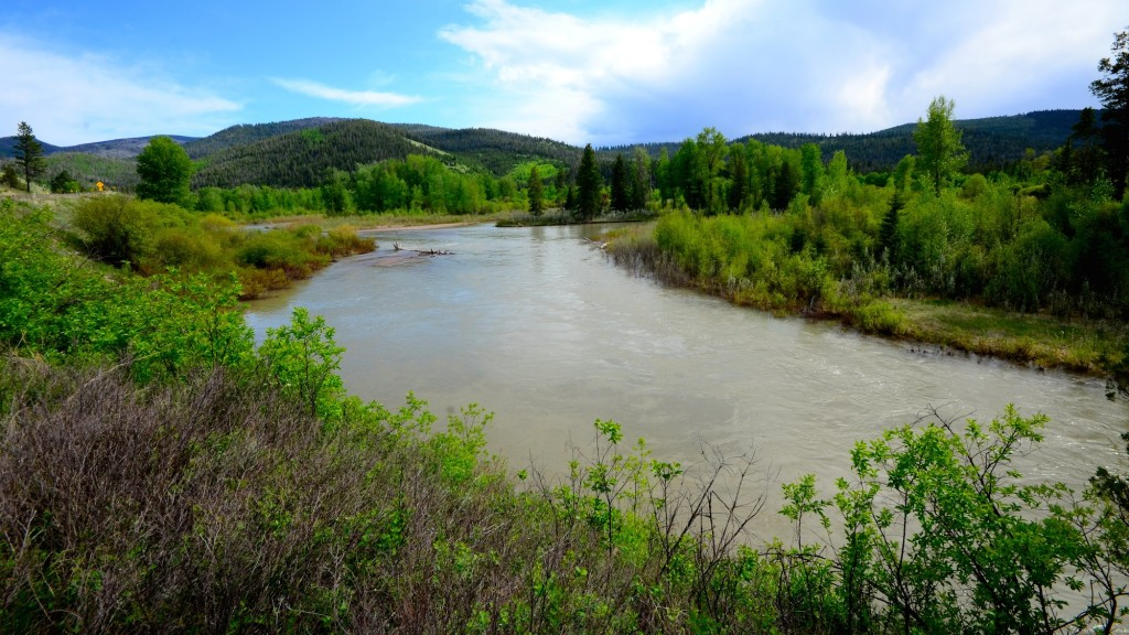 Not yet on the Blackfoot River