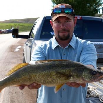 Missouri River Walleye fly fishing
