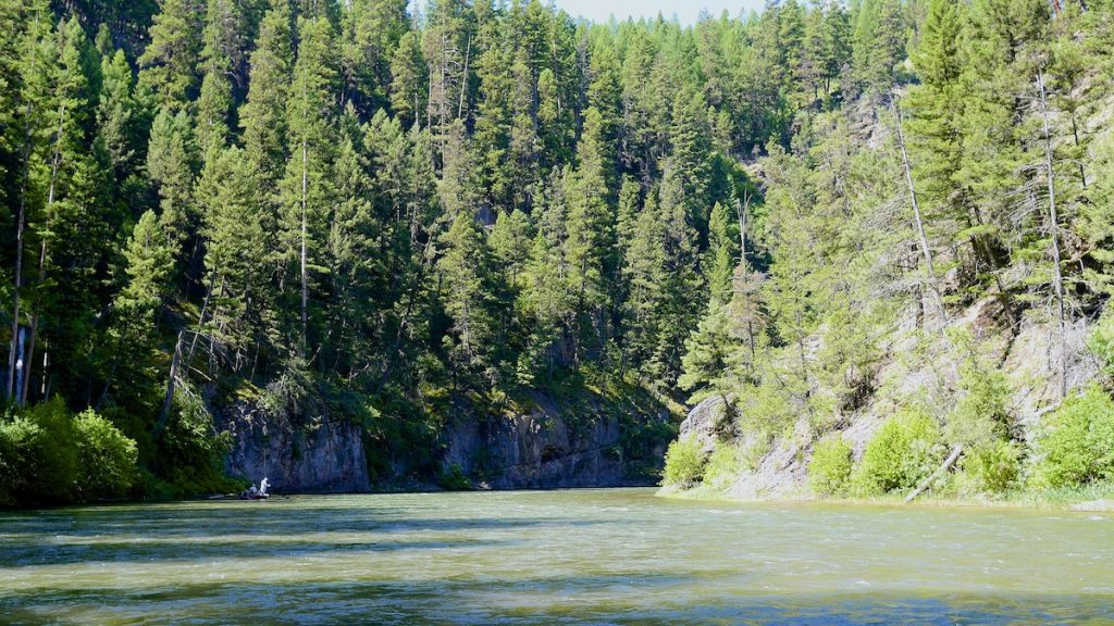 Blackfoot River fly fishing