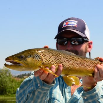 Missouri River Montana Fishing Report 8.18.14