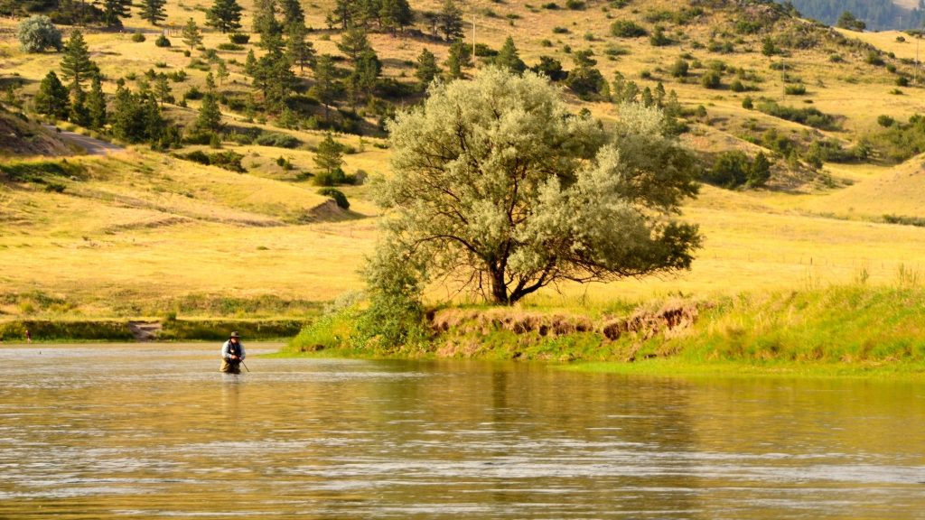Missouri River Fishing Report 8.7.14