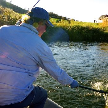 Best Montana streamer fishing