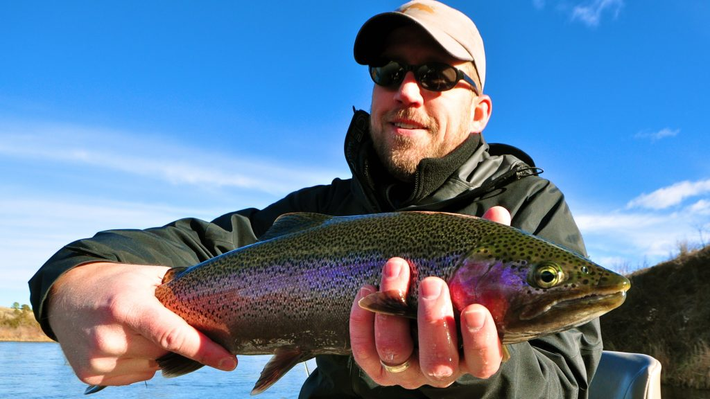 Missouri River Montana Fishing Report 11.25.14