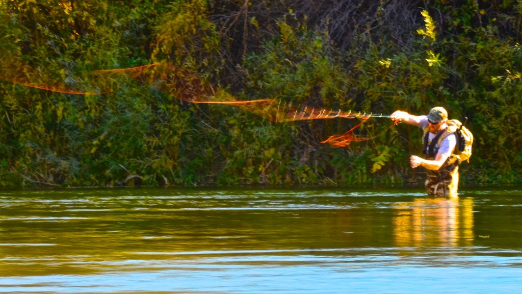 Missouri River November Fishing Report