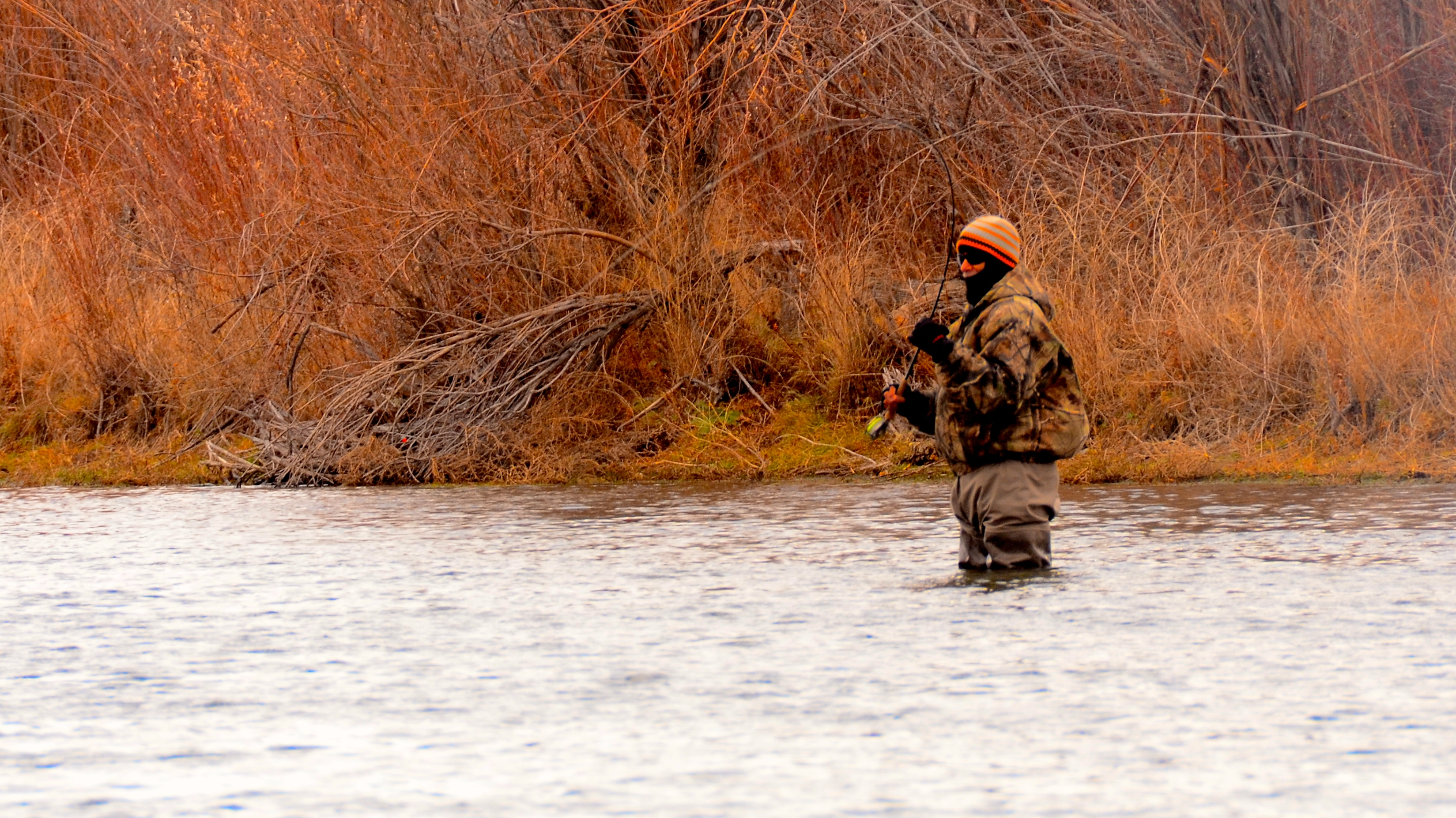 Missouri River Montana Fishing Report 11.29.14
