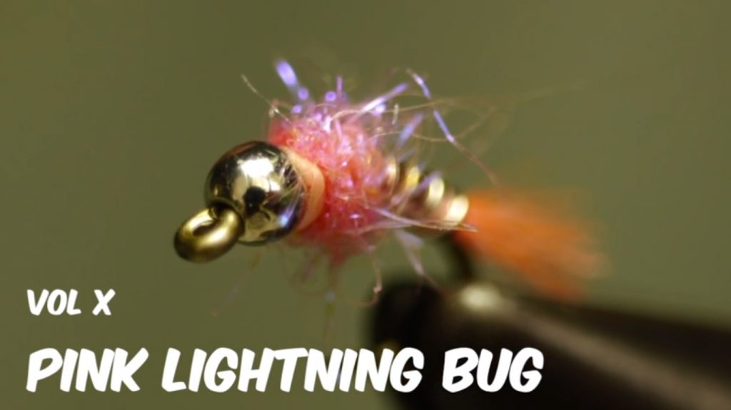 Pink Lightening Bug Fly Tying Video