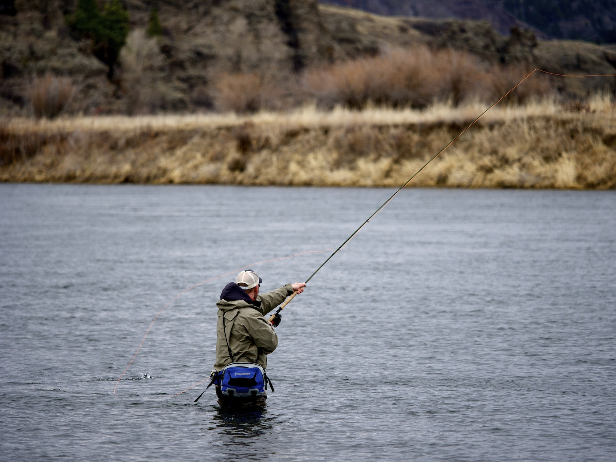 Forrest Spey