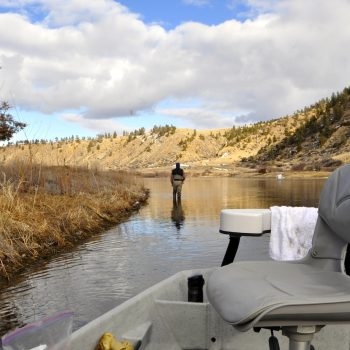 Missouri River Montana Fishing Report 3.5.15