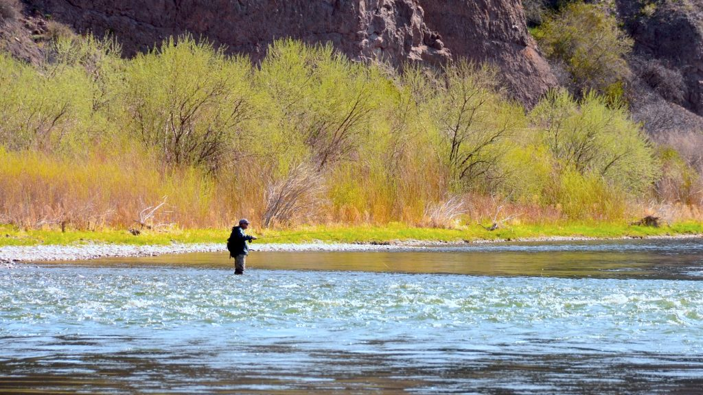 The Voice of a Wade Angler