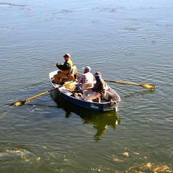 Sunday Fishing Report
