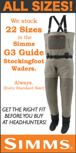 SIMMS 5 for Winter