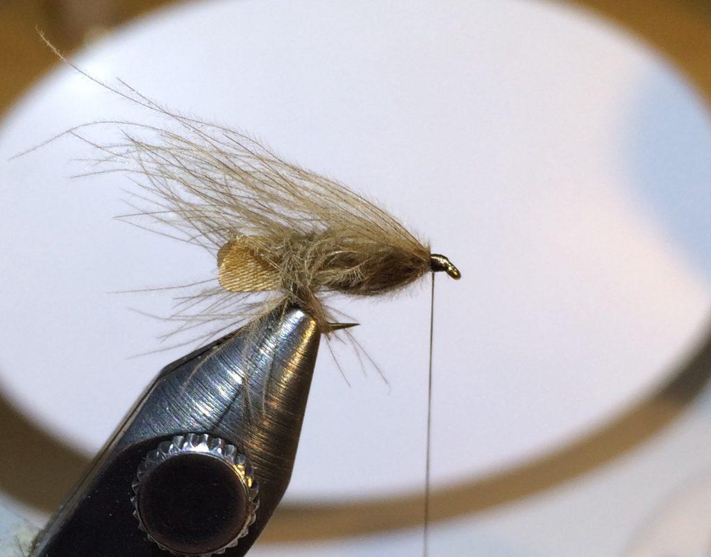 Stockig Wing Caddis_6