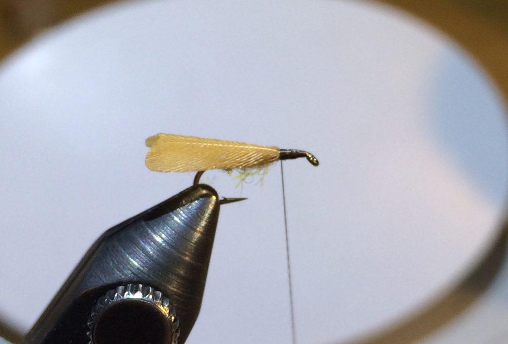 Stockig Wing Caddis_4