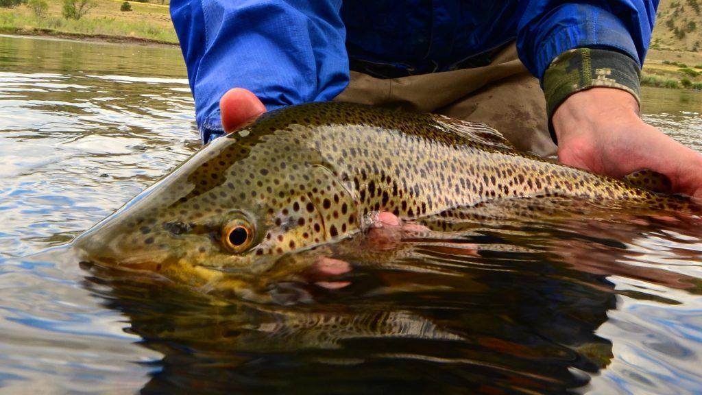 Monday Fishing Report