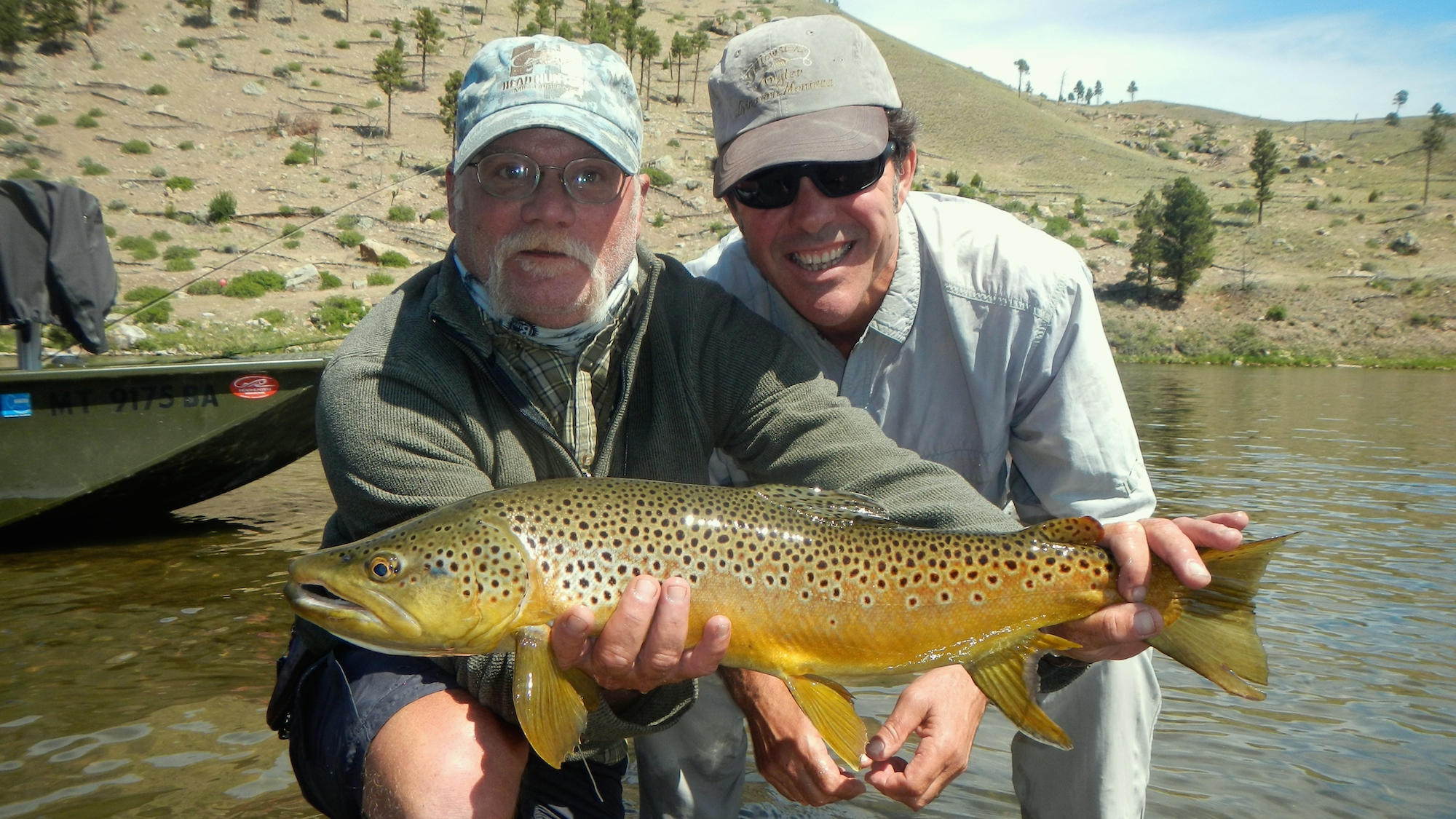 Upper missouri river brown trout headhunters fly shop for Trouts fly fishing reports