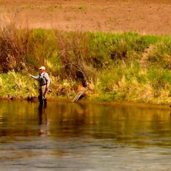 May Missouri River Fishing Forecast