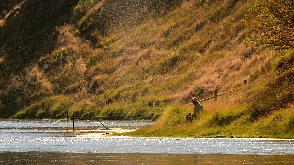 Late July & August Missouri River Fishing Forecast