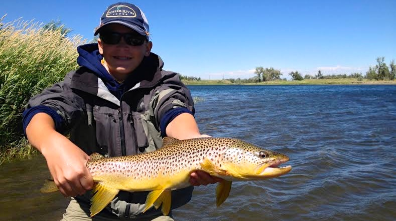 Silly Sunday Scenery Brown Trout