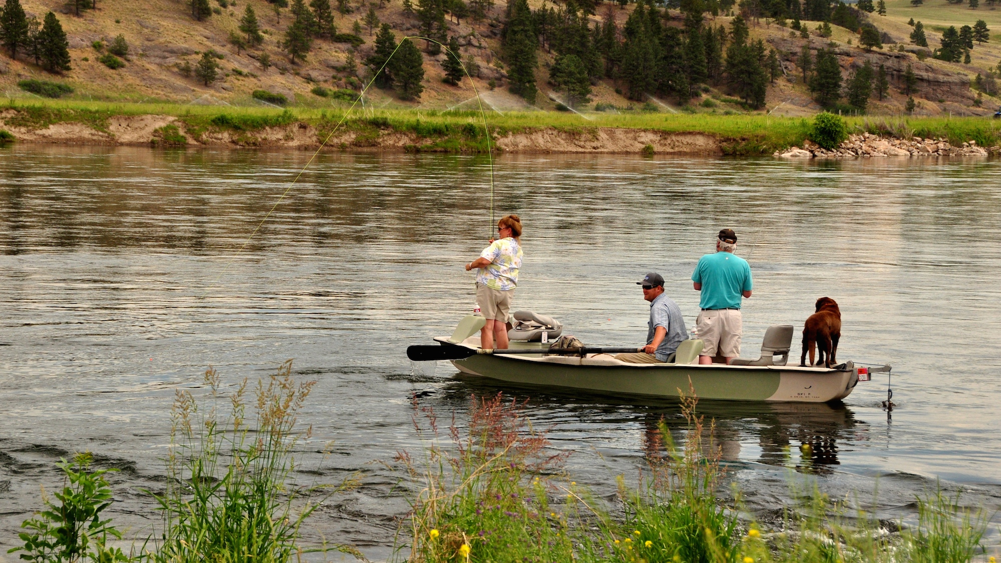 Thursday morning brown trout headhunters fly shop for Missouri river fishing