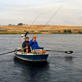 Missouri River Monday Fly Fishing Report