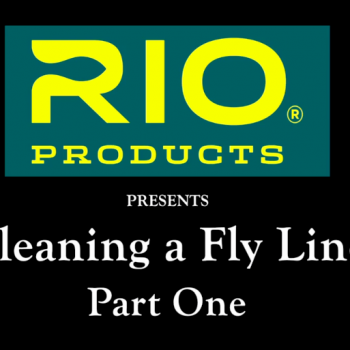 How to Clean a Fly Line Part 1