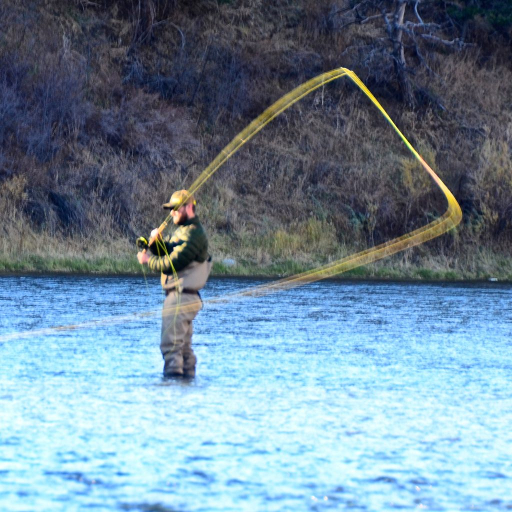 Missouri river fly fishing report montana for Trouts fly fishing reports