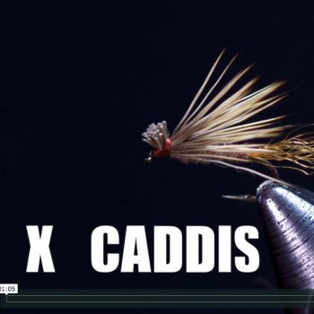 X Caddis Just Add Vise Video and Kit