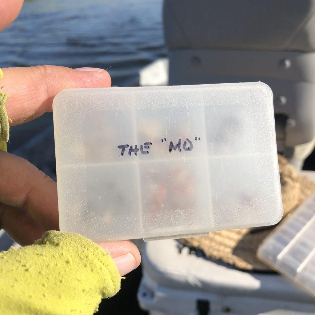 Friday Foto Weekend Missouri River Fishing Report 7.27.18