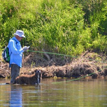 The 5 Don'ts of Dry Fly Fishing