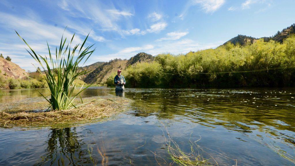 Monday Morning Missouri River Fishing Report