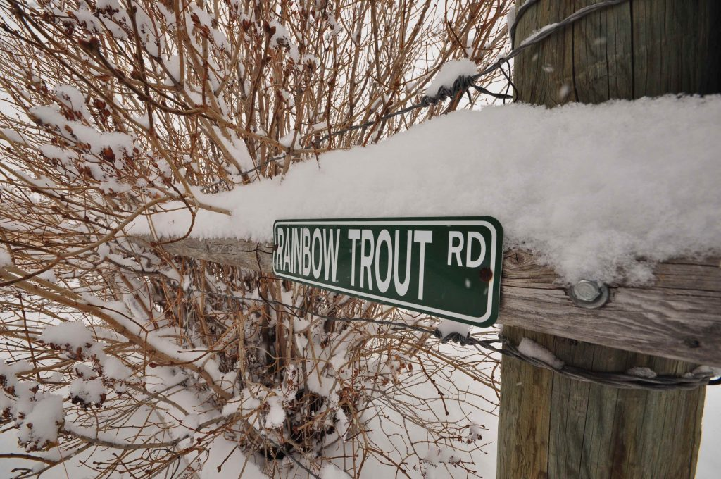 Your Trout Voice and Concerns Matter