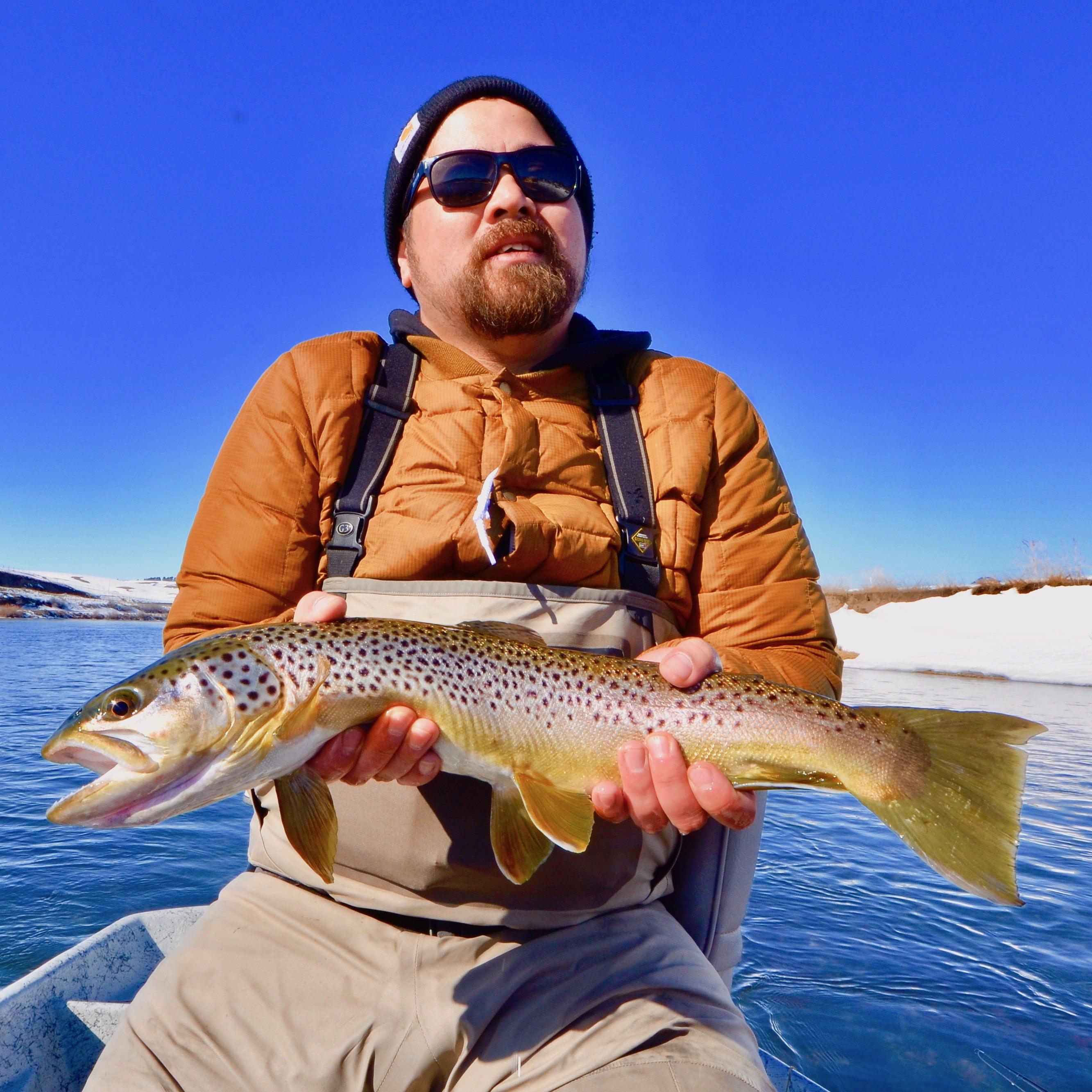 Tuesday Fishy Update