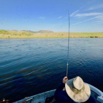 Comprehensive Monday Missouri River June 3rd Fishing Report