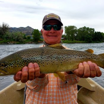 Saturday Scenery Dry Fly Brown Trout