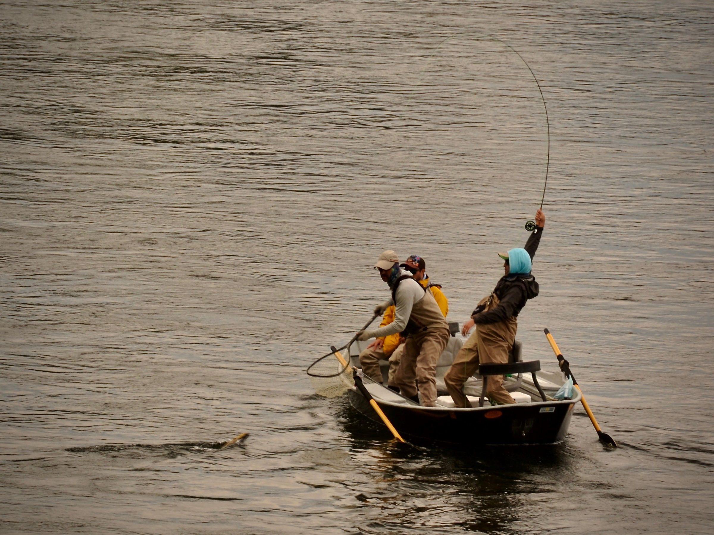 Friday Foto June 28th Missouri River Fishing Report