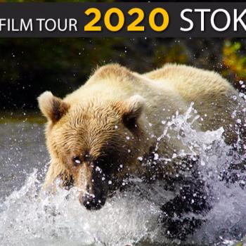 https://vimeo.com/378375940?utm_source=newsletter&utm_medium=email&utm_campaign=fly_fishing_film_tour_stoke_reel&utm_term=2020-02-08