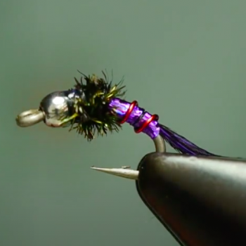 Purple Lightening Bug Tying Video