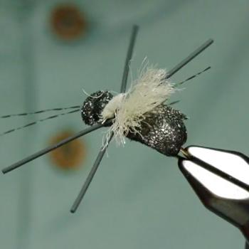 Longhorn Beetle Tying Video