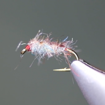 Tailwater Sow Bug Tying Video
